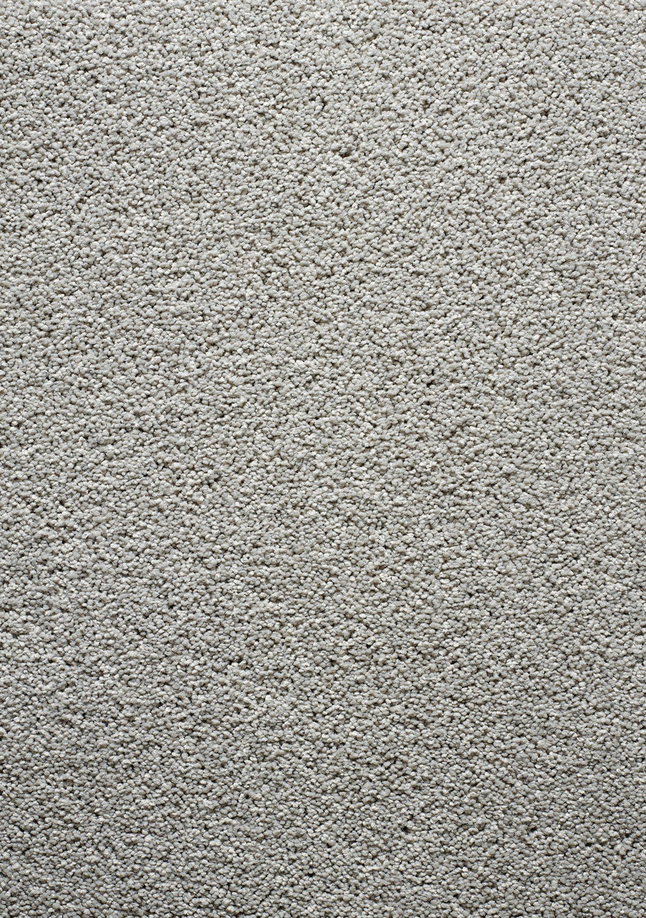 Carpet Cut Pile Belleza Escarra Pearl Ash Flooring Xtra